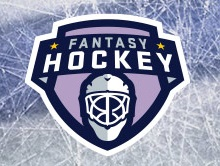 what are the terms about daily fantasy hockey